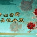 景山公园牡丹展宣传栏图片