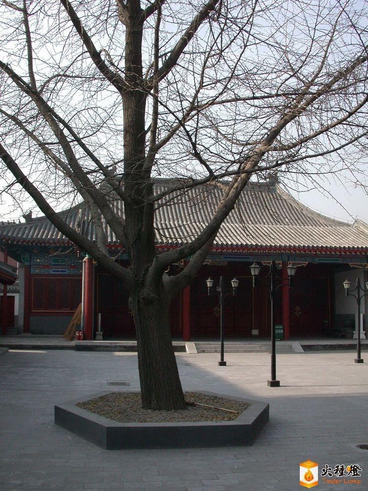 东四清真寺庭院景观4.jpg