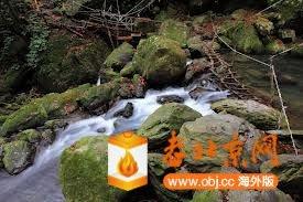 山友架設的便橋-2.jpg