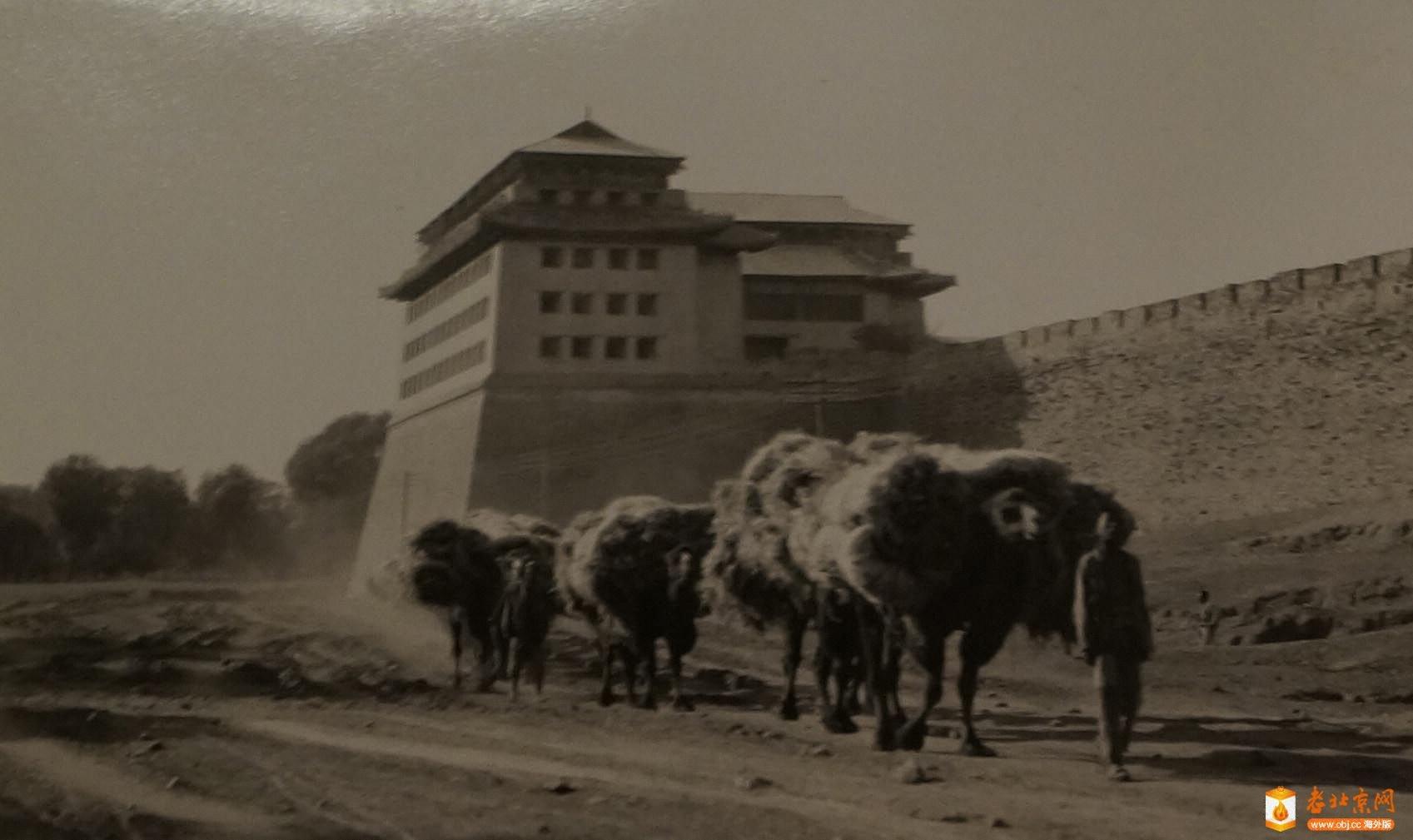 骆驼队穿过城门楼.jpg