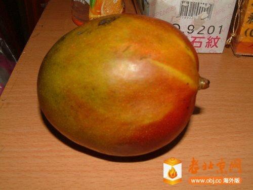 聖心芒果-1.jpg