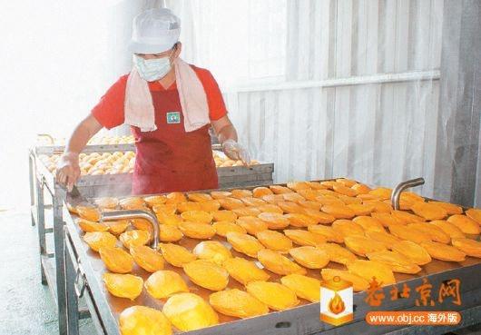 南化芒果乾製作.jpg