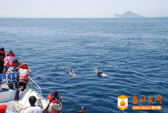 龜山島賞鯨豚-2.jpg