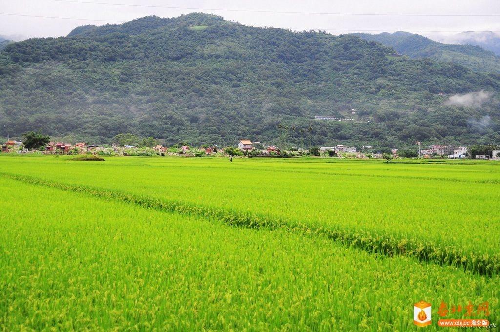 龜山島上風光-5.jpg