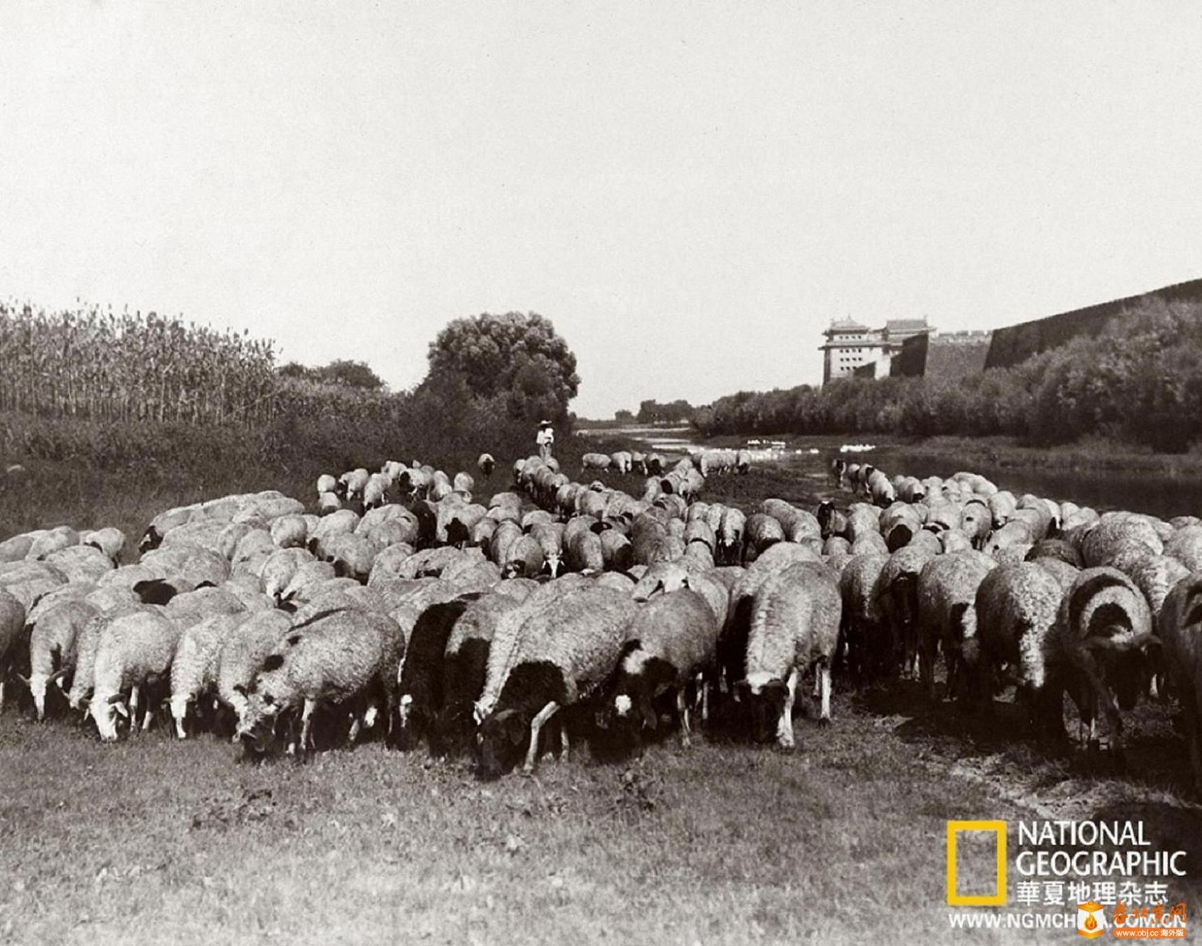 078.内城-东北角楼     (1915年).jpg