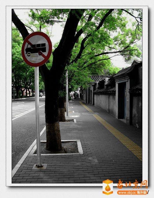 IMG_9398.jpg