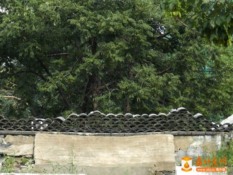RE: 求教:北京老房子柱子顶上哪方的描花儿叫什么?