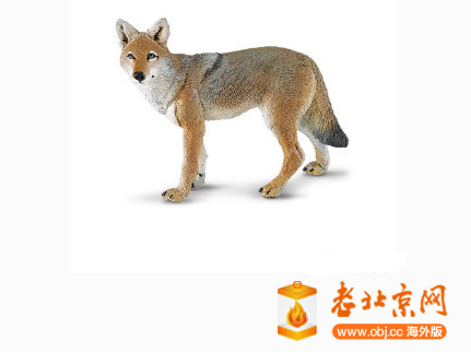RE: 大尾巴狼?