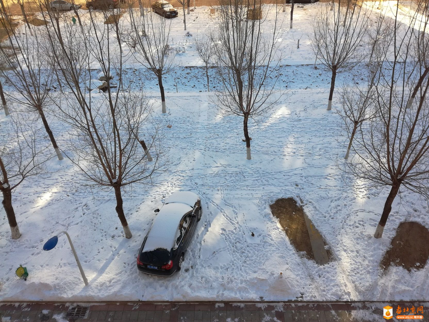 终于下了一场正经的雪