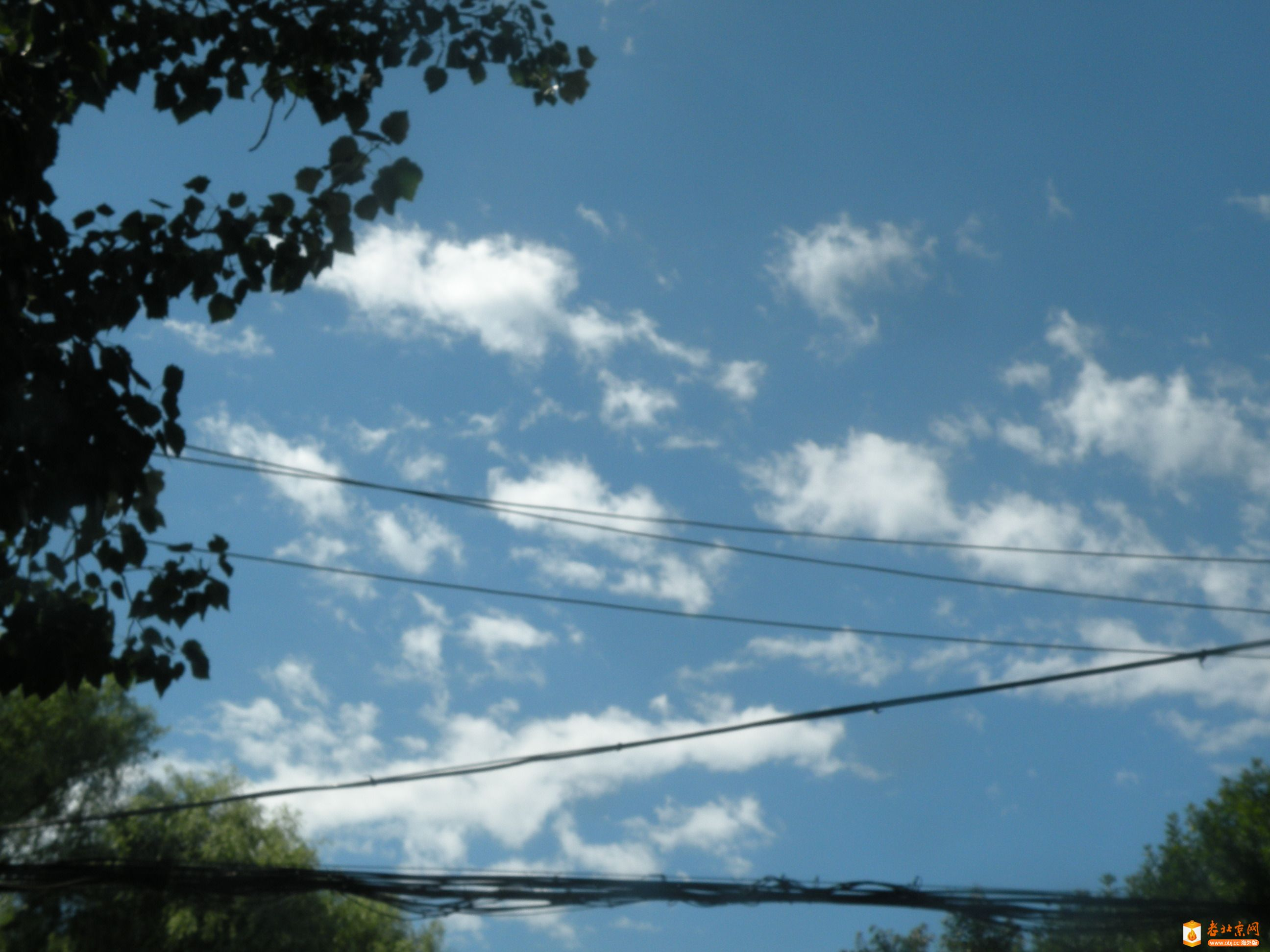 蓝天白云.JPG