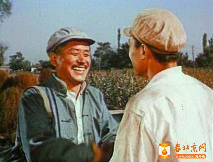 1963《我们村里的年青人》.jpg