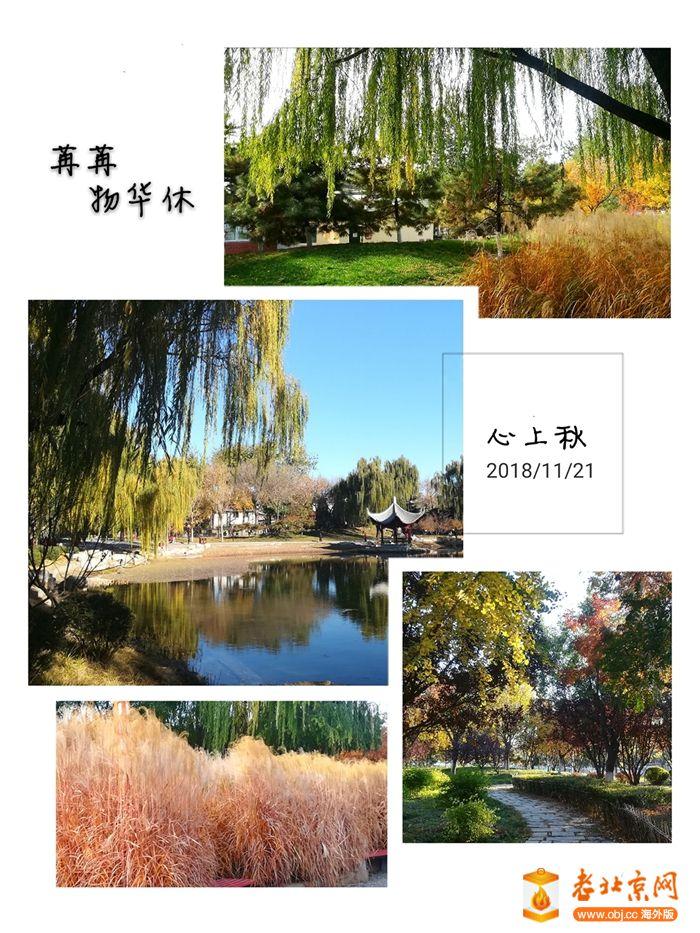 微信图片_20181202164702.jpg