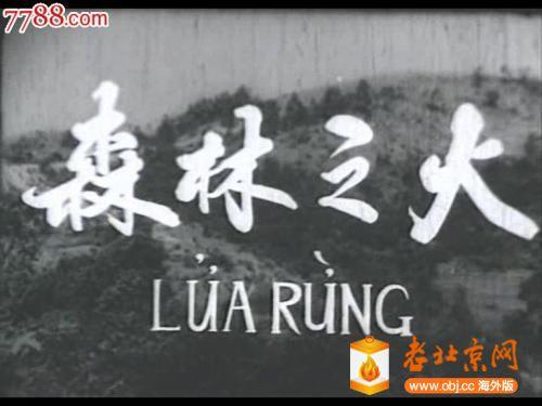 越南电影.jpg