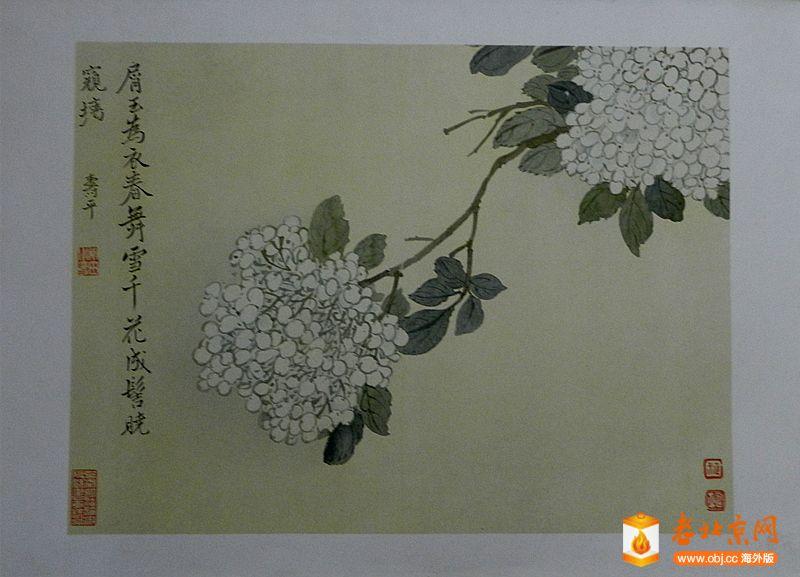 DSCN4369_副本.jpg