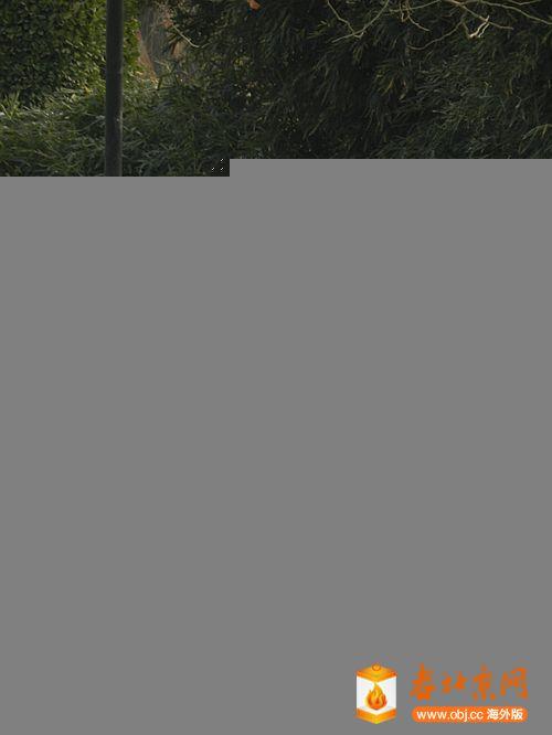 DSCN5306_副本.jpg