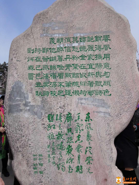 海棠花溪碑台背面.jpg