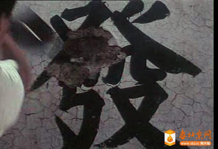snapshot20100615163756.jpg