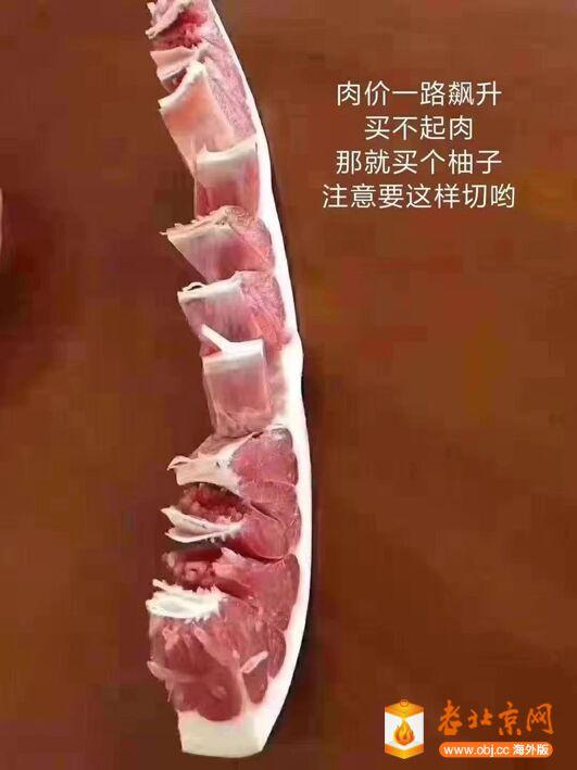 代肉品.jpg