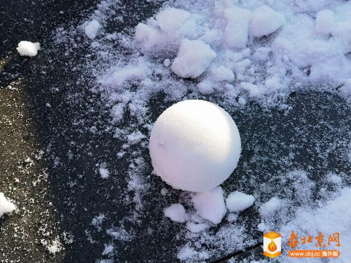 雪球.jpg