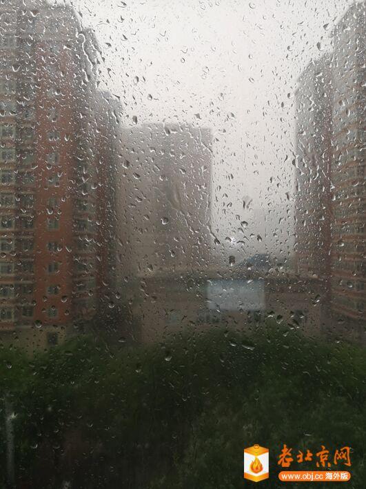 雨不小1.jpg