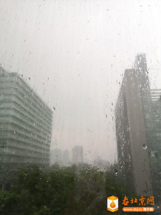 雨不小.jpg