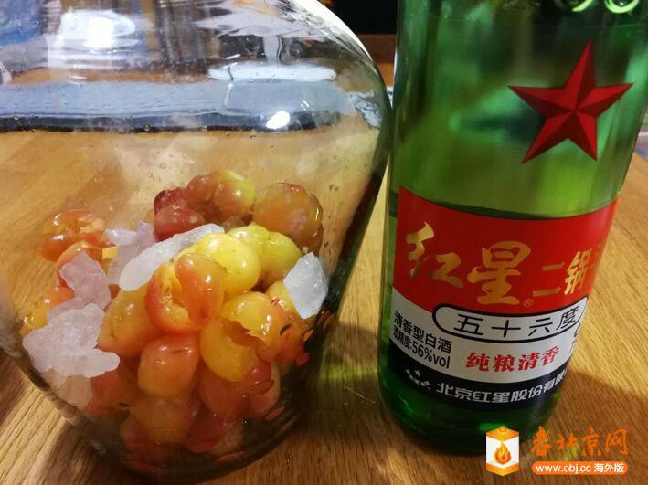 樱桃酒4.jpg