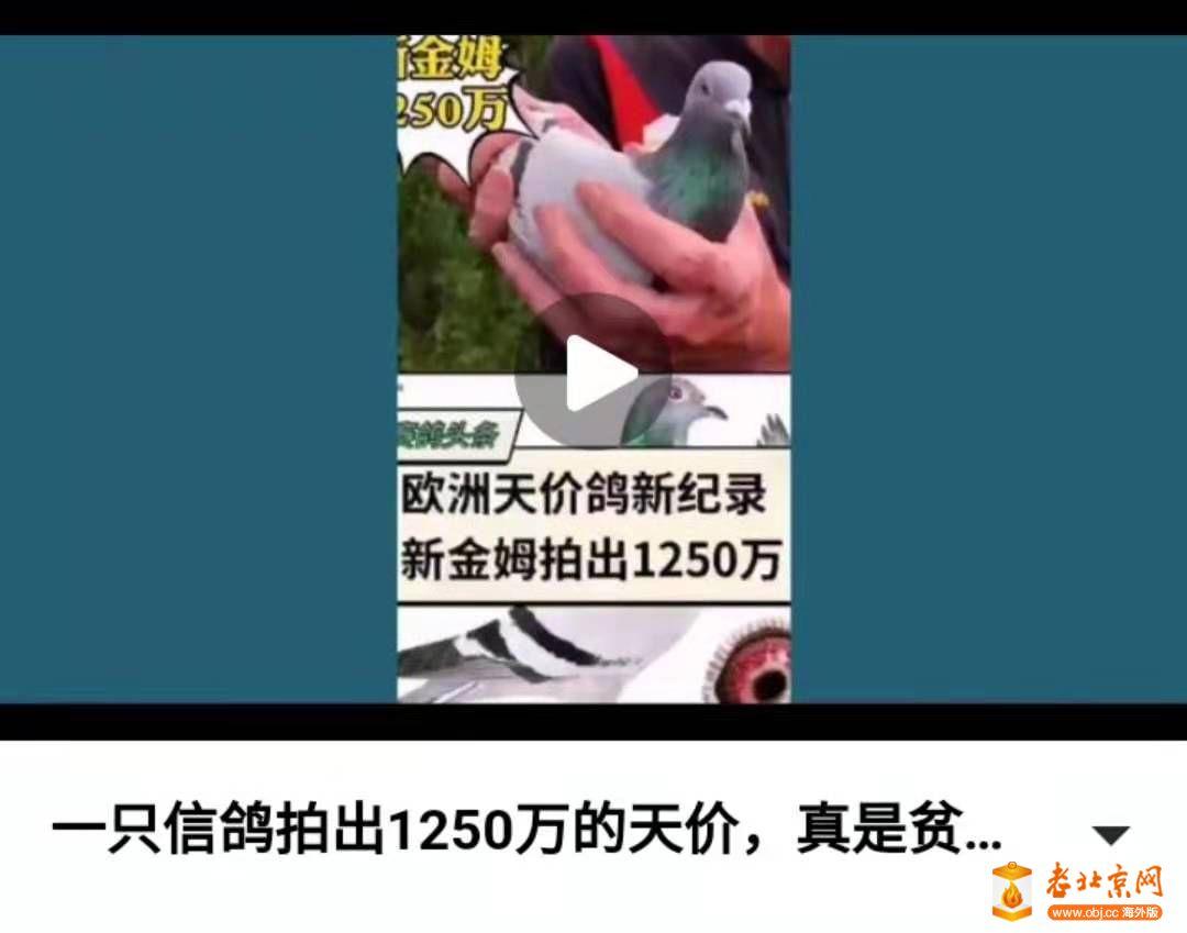 webwxgetmsgimg.jpg861.jpg