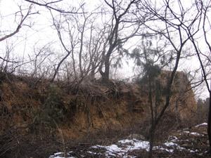 旭华之阁山上的古墓