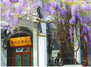 北京名人故居中的古树名木